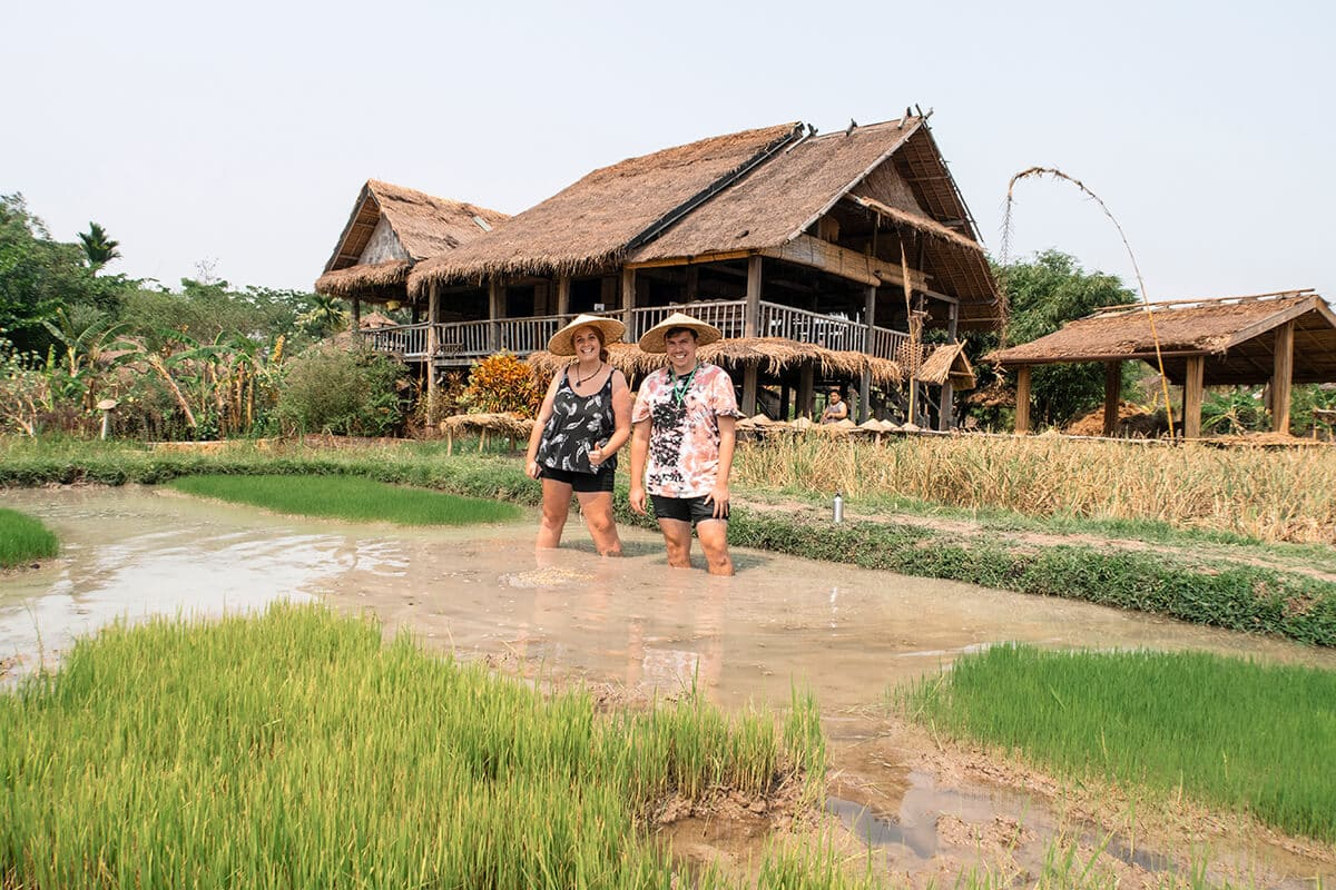 rice farming experience with backstreet academy in luang prabang