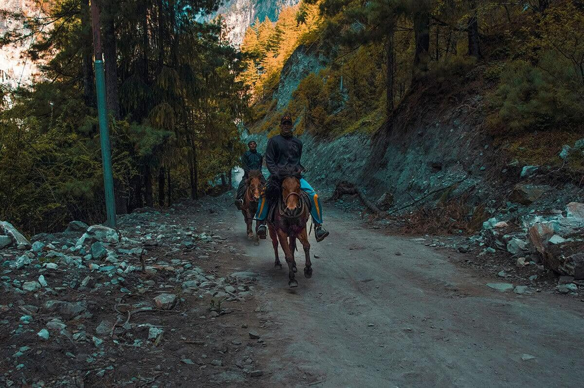 horses chame to upper pisang annapurna circuit