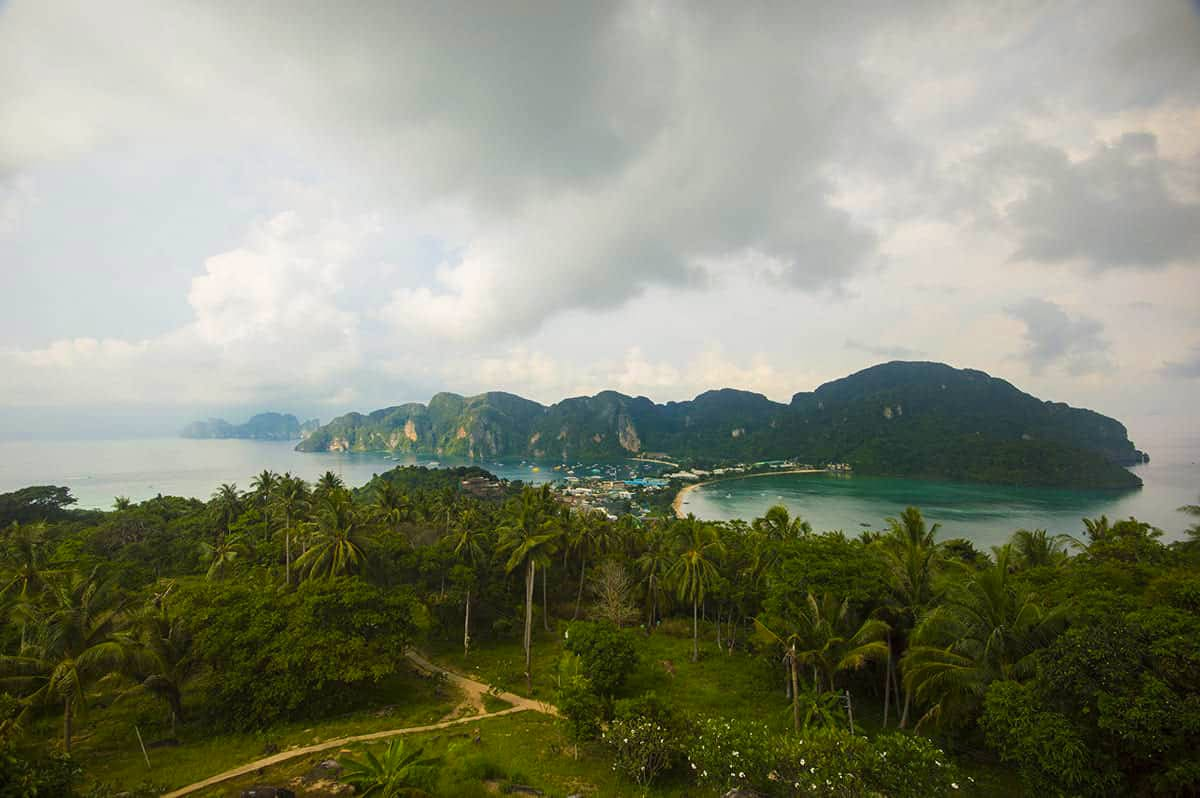 the hiking trail leading up to koh phi phi viewpoint 2